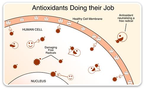 antioxidants-vitiligo