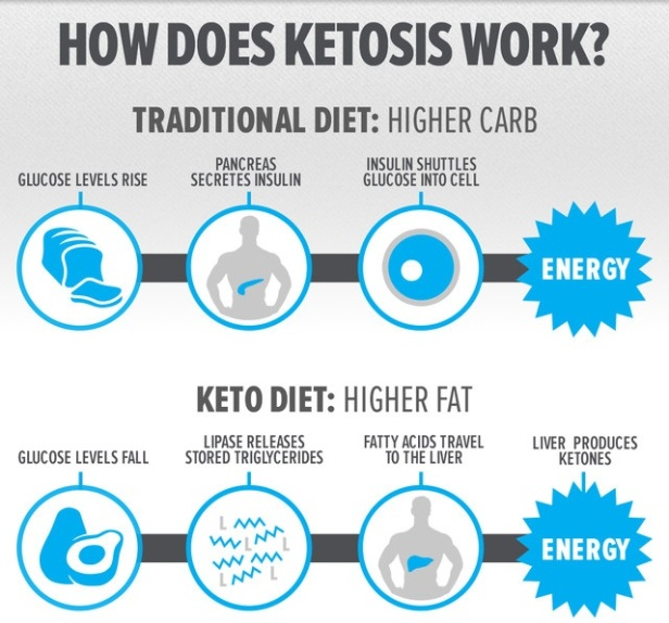 ketogenic-diets-process