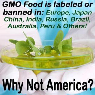 GMO-labels