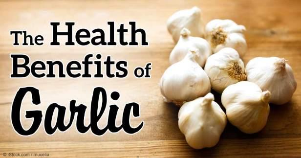 health-benefits-garlic