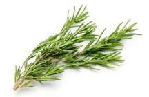 Rosemary-inflammation