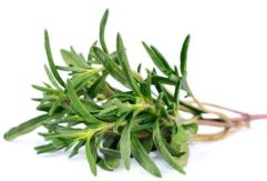 thyme-inflammation