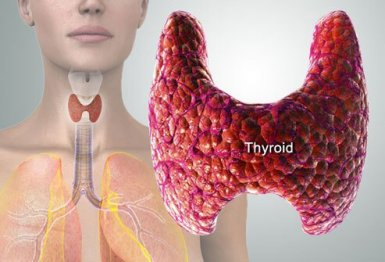 thyroid-slow-symptoms